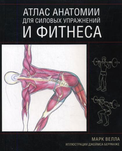 Атлас анатомии человека синельников в 4-х томах скачать бесплатно - 7d87